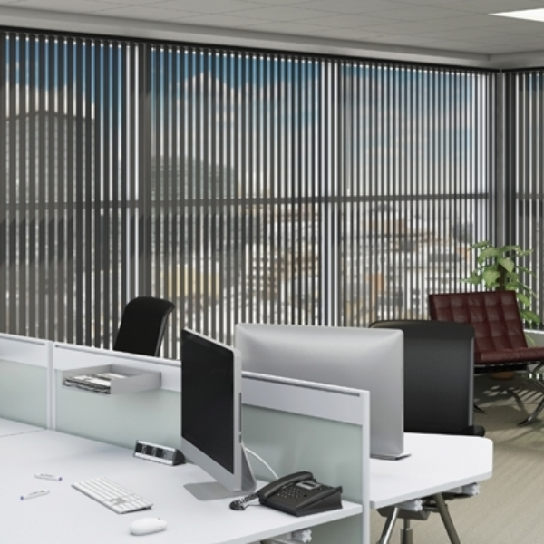 Vertical blinds are perfect for offices