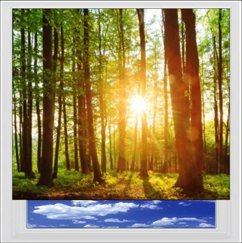 Forest Sunset Digitally Printed Photo Roller Blind