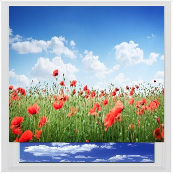 Poppy Meadow Digitally Printed Photo Roller Blind