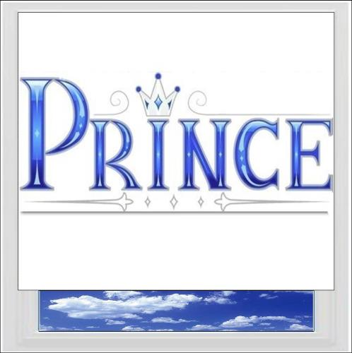 Prince Digitally Printed Photo Roller Blind
