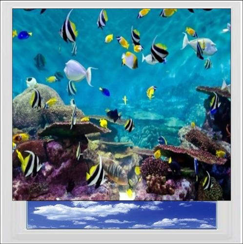 Sea Life Digitally Printed Photo Roller Blind