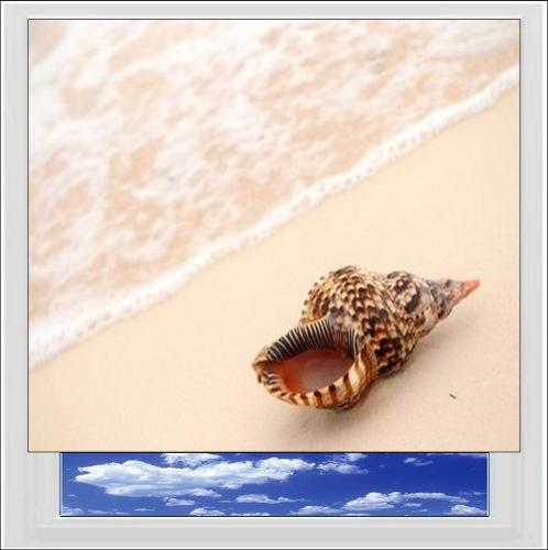 Shell On Beach Digitally Printed Photo Roller Blind
