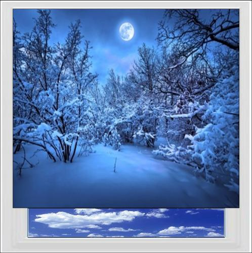 Snow Wood At Night Digitally Printed Photo Roller Blind