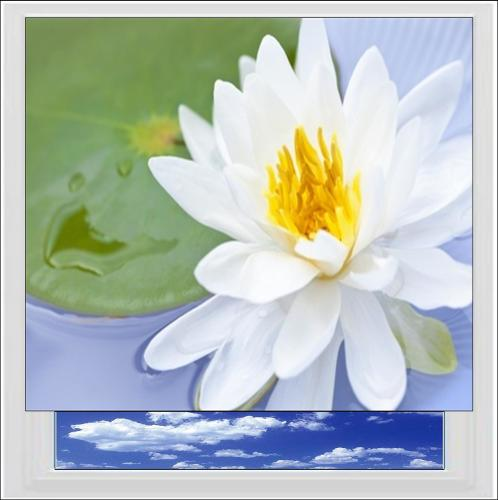 Water Lily Digitally Printed Photo Roller Blind