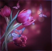 Butterflies and Purple Tulips Digitally Printed Photo Roller Blind