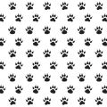 Dog Paw Prints Digitally Printed Photo Roller Blind