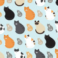 Fat Cats Digitally Printed Photo Roller Blind