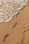 Footprints In The Sand Digitally Printed Photo Roller Blind