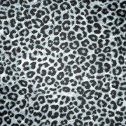 Leopard Print Digitally Printed Photo Roller Blind